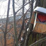 Vogelhäuschen mit schneebedecktem Dach